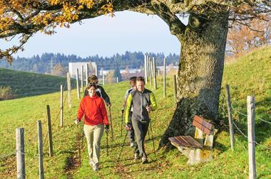 Freizeitaktivitäten für Paare   Nordic-Walking-Tour