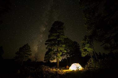 Freizeitaktivitäten | Nacht im Wald