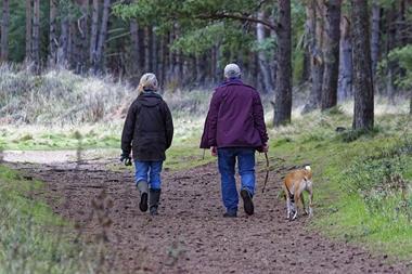 Freizeitaktivitäten für Paare   Spaziergang mit Hund