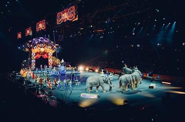 Freizeitaktivitäten für Paare   Zirkus besuchen